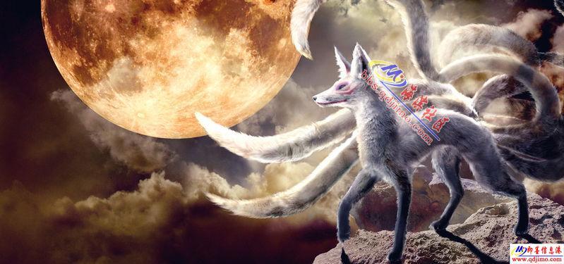 求九尾狐恴图片,属于桌面的